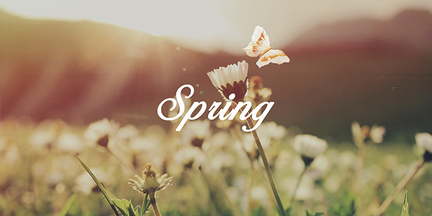 Spring forward through back office outsourcing