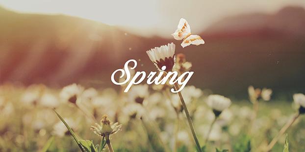 acquire-spring